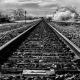 Fine art black and white infrared photograph