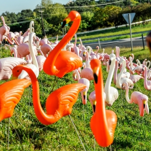 Fine art conceptual photography of roadside America, color