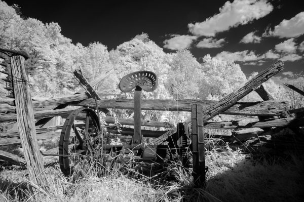 Fine art conceptual photography in pastoral setting, black and white infrared