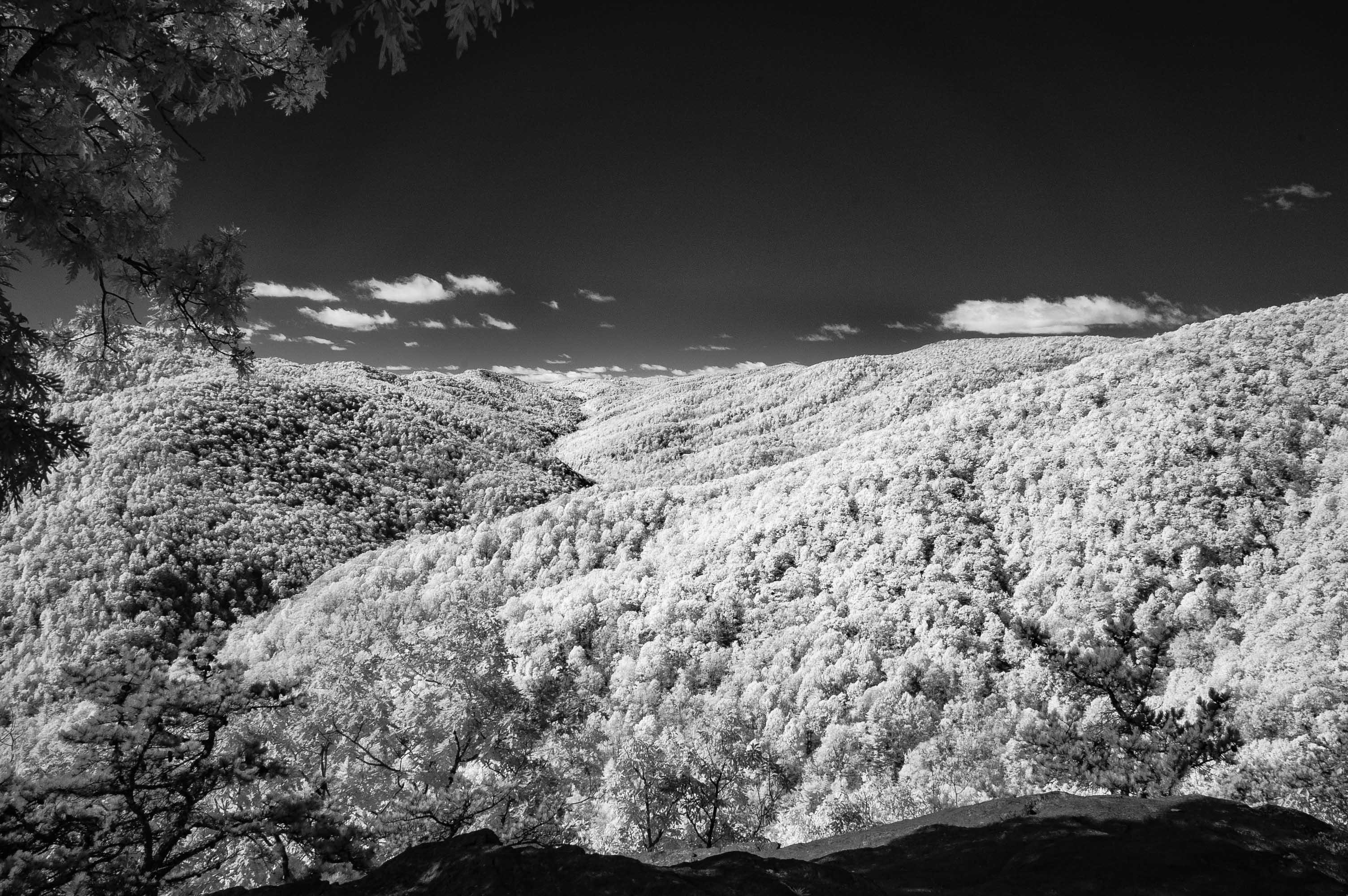 Binhammerphotographs Infrared Blue Ridge mountains