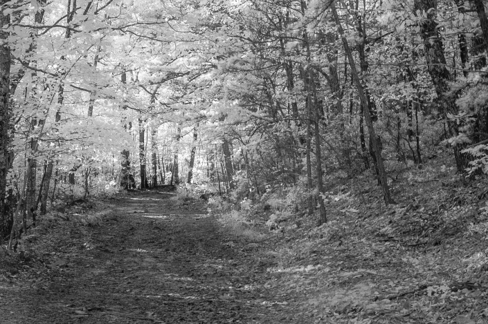 Binhammerphotographs infrared photography trails